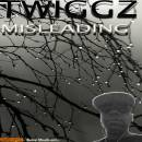 New Misleading cover