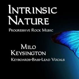 Intrinsic Nature-Award Winning Band