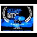 cheryl-hodge-award-www-hmmawards-org-2013winners