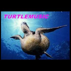 TURTLEMUSIC