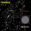 Triangle Album Cover