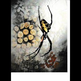 Human Spiderz