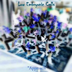 Low Embryonic Cells