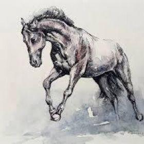 Ian C Bishop / Horsepower