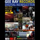 Gee Ray News Cover - 13-500